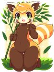 1girl :3 :d animal_nose blush branch breasts brown_fur commentary_request fang furry grass green_eyes holding holding_branch leaf lowres medium_breasts no_nipples open_mouth orange_fur orange_hair original partial_commentary red_panda red_panda_ears red_panda_girl red_panda_tail simple_background smile solo takiune whiskers white_fur wide_hips
