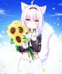 1girl :t absurdres ahoge animal_ears cat_ears cat_tail chiutake_mina closed_mouth commentary_request eating flower food food_on_face hairband head_tilt highres holding holding_flower holding_food hololive looking_at_viewer midriff navel nekomata_okayu onigiri petals purple_hair solo standing sunflower tail violet_eyes virtual_youtuber