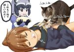 2girls animal animal_ears black_gloves black_hair brown_eyes brown_hair cat common_raccoon_(kemono_friends) crossover eyebrows_visible_through_hair fumizuki_(kantai_collection) gloves grey_hair kantai_collection kemono_friends kneading long_hair lying misumi_(niku-kyu) multicolored_hair multiple_girls neckerchief on_back open_mouth ponytail raccoon_ears remodel_(kantai_collection) sailor_collar school_uniform serafuku simple_background sleeping sweat translation_request white_background white_hair yellow_neckwear