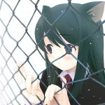 black_hair blue_eyes blush cat_ears chainlink_fence close-up duplicate fence green_hair highres houmitsu ribbon ribbons school_uniform snow wallpaper