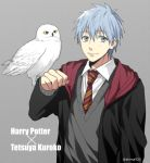 1boy animal_on_arm bird bird_on_arm black_cape blue_eyes blue_hair cape character_name closed_mouth collared_shirt commentary_request copyright_name crossover eyebrows_visible_through_hair grey_background grey_sweater gryffindor harry_potter hedwig hogwarts_school_uniform kuroko_no_basuke kuroko_tetsuya looking_at_viewer male_focus mashima_shima necktie owl red_neckwear school_uniform shirt simple_background smile striped striped_neckwear sweater twitter_username upper_body white_shirt