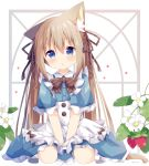 1girl :o absurdres animal_ear_fluff animal_ears apron bangs between_legs blue_dress blue_eyes blush bow brown_hair brown_ribbon cat_ears cat_girl cat_tail collared_dress commentary_request dress eyebrows_visible_through_hair flower food frilled_apron frilled_dress frilled_sleeves frills fruit hair_between_eyes hair_ribbon hand_between_legs highres long_hair looking_at_viewer nakkar original parted_lips ribbon seiza short_sleeves sitting solo strawberry strawberry_blossoms striped striped_bow tail twintails very_long_hair white_apron white_background white_flower