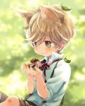 1boy animal animal_ears bangs bird black_shorts blurry blurry_background blush brown_hair bruise cat_ears closed_mouth collared_shirt commentary_request depth_of_field dress_shirt eurasian_tree_sparrow eyebrows_visible_through_hair grey_eyes hair_between_eyes hands_up holding holding_animal injury kuga_tsukasa leaf leaf_on_head looking_at_animal looking_away male_focus neck_ribbon original red_ribbon ribbon shirt short_sleeves shorts smile solo sparrow suspender_shorts suspenders white_shirt