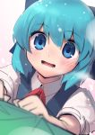 1girl :d blue_eyes blue_hair blue_vest blurry blurry_foreground blush boa_(brianoa) cirno collared_shirt commentary depth_of_field english_commentary eyebrows_visible_through_hair highres looking_at_viewer open_mouth puffy_short_sleeves puffy_sleeves shirt short_sleeves smile solo touhou upper_body vest white_shirt wing_collar