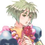 1girl asellus_(saga_frontier) commentary_request dress flower green_hair looking_at_viewer red_flower red_rose rose saga saga_frontier short_hair simple_background solo white_background
