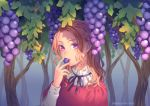 1girl blonde_hair braid commentary_request day eating food forehead fruit grapes highres holding holding_food holding_fruit leaf long_sleeves minami_seira neck_ribbon open_mouth original outdoors pink_lips plant portrait purple_neckwear purple_ribbon ribbon sidelocks solo sunlight