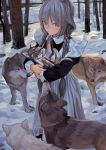 animal animal_ears apron blush braid cat_ears dog fkey forest grey_hair highres holding holding_animal long_hair looking_at_viewer maid maid_apron maid_dress nature original puppy red_eyes scenery snow twintails wolf