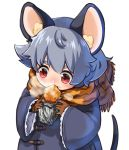 1girl alternate_costume animal_ears animal_print bangs blue_coat breath coat commentary_request eating eyebrows_visible_through_hair foil food food_on_face frilled_sleeves frills gloves grey_hair hair_between_eyes highres layered_clothing long_sleeves looking_at_object mouse_ears mouse_tail nazrin red_eyes scarf short_hair string sweet_potato tail take_no_ko_(4919400) tiger_print tiger_stripes touhou upper_body visible_air white_background wide_sleeves