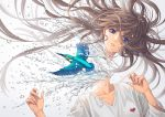 1girl bangs blue_eyes brown_hair common_kingfisher disembodied_head floating_hair grey_background hands_up heart highres kingfisher long_hair long_sleeves looking_at_viewer minami_(minami373916) original parted_lips shirt solo splashing surreal upper_body water white_shirt