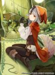 1girl animal_ears black_hair boots cloak corset fire_emblem fire_emblem_cipher fire_emblem_fates frills grey_hair junk kurosawa_tetsu multicolored_hair official_art outdoors pants red_cloak red_eyes red_hood silk spider_web stick tail tight tight_pants two-tone_hair velouria_(fire_emblem) wolf_ears wolf_tail