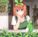1girl absurdres bangs blue_eyes blurry blurry_background blurry_foreground blush breasts chin_rest closed_mouth collarbone commentary_request depth_of_field dress go-toubun_no_hanayome green_dress green_ribbon hair_between_eyes hair_ribbon hand_on_own_cheek highres indoors jii_tomo leaf looking_at_viewer medium_breasts nakano_yotsuba orange_hair outdoors plant potted_plant ribbon shirt short_hair smile solo upper_body watering watering_can white_shirt