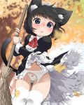 1girl animal_ear_fluff animal_ears bangs blue_eyes blurry blurry_background blush bow bow_panties bowtie broom cat_ears cat_tail dress eyebrows_visible_through_hair feet_out_of_frame frilled_dress frills garter_belt highres juliet_sleeves koharuko_(khrkhrk) leaf long_sleeves maid maid_dress maid_headdress navel open_mouth original panties puffy_sleeves red_bow red_neckwear short_hair solo tail thigh-highs underwear white_legwear white_panties wind wind_lift