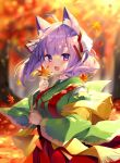 1girl :d ahoge animal_ear_fluff animal_ears autumn_leaves bangs blurry blurry_background blush breasts commentary_request day depth_of_field eyebrows_visible_through_hair fringe_trim green_kimono hair_ribbon hakama highres holding holding_leaf japanese_clothes kimono komari_channel leaf long_hair long_sleeves looking_at_viewer maple_leaf medium_breasts open_mouth outdoors purple_hair red_hakama ribbon sakura_komari shawl shiika_yuno smile solo thick_eyebrows tree violet_eyes virtual_youtuber white_ribbon wide_sleeves