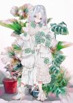 1girl blue_eyes dress frilled_dress frills full_body hair_between_eyes highres hood hood_up leaf long_hair original plant potted_plant sleeves_past_fingers sleeves_past_wrists solo standing white_dress white_footwear white_hair yogisya