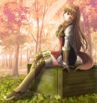 1girl animal_ears autumn bangs boots brown_footwear brown_gloves brown_hair from_side gloves grey_skirt highres long_hair long_sleeves miniskirt open_mouth outdoors pasopy pleated_skirt profile raccoon_ears raccoon_girl raccoon_tail raphtalia red_eyes shiny shiny_hair sitting skirt solo straight_hair tail tate_no_yuusha_no_nariagari thigh-highs thigh_boots very_long_hair zettai_ryouiki