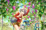 blush dress grey_eyes grey_hair idolmaster_cinderella_girls_starlight_stage otokura_yuuki short_hair smile