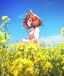 1girl :o animal_ears bangs blue_sky blurry blurry_background blurry_foreground breasts brown_eyes brown_hair clouds collared_shirt day depth_of_field field flower flower_field horse_ears looking_away nice_nature_(umamusume) ouri_(aya_pine) outdoors parted_lips shirt sky small_breasts solo twintails umamusume upper_body white_shirt yellow_flower