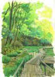 border day forest grass highres nature no_humans original outdoors path sawitou_mizuki scenery tree white_border