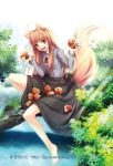 apple apples barefoot brown_hair fang food fruit holding holding_fruit holo long_hair niko niko_(azurite) red_eyes skirt_basket skirt_carry spice_and_wolf tail wolf_ears