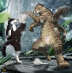 blurry cat clenched_teeth commentary_request dated depth_of_field dust_cloud fighting highres kicking leaf matataku motion_blur no_humans original outdoors parrying paws shadow signature standing standing_on_one_leg surprised_cat_(matataku) teeth whiskers
