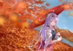 001machi 1girl autumn_leaves blue_sky blurry clouds cowboy_shot day depth_of_field dutch_angle hairband hakama hakama_skirt hip_vent japanese_clothes kantai_collection long_hair looking_at_viewer mountain muneate oriental_umbrella outdoors red_hairband red_hakama shoukaku_(kantai_collection) sky solo umbrella white_hair yellow_eyes