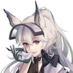 1girl animal_ears arknights biting commentary_request fang gloves grani_(arknights) hair_between_eyes highres horse_ears jacket jiuwuyin lips long_hair looking_at_viewer ponytail silver_hair simple_background smile solo upper_body violet_eyes white_background