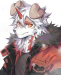 1boy animal_ears ao_(chung0u0) arknights bangs black_tank_top brown_fur dog_boy dog_ears face fur-trimmed_jacket fur_trim furry highres horns hung_(arknights) jacket looking_at_viewer male_focus medium_hair multicolored_hair muscle orange_eyes orange_hair orange_jacket pectorals portrait single_horn smile solo streaked_hair tank_top two-tone_fur upper_body white_background white_fur white_hair