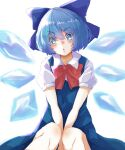 +_+ 1girl :o absurdres between_legs blue_bow blue_dress blue_eyes blue_hair bob_cut bow bowtie cirno commentary dress eyebrows_visible_through_hair gumi_(fwjn7284) hair_between_eyes hair_bow hand_between_legs head_tilt highres ice ice_wings knees looking_at_viewer open_mouth pinafore_dress puffy_short_sleeves puffy_sleeves red_bow red_neckwear shirt short_hair short_sleeves sidelocks simple_background solo sparkling_eyes star-shaped_pupils star_(symbol) symbol-shaped_pupils thick_eyebrows touhou v-shaped_eyebrows v_arms white_background white_shirt wing_collar wings