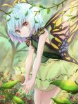 1girl antennae backless_outfit bangs blue_hair blue_nails blurry blurry_background butterfly_wings commentary_request cowboy_shot day eternity_larva eyebrows_visible_through_hair fingernails flower forest green_shirt highres kayon_(touzoku) leaf leaf_on_head leaning_forward light_rays looking_at_viewer nail_polish nature outdoors own_hands_together red_eyes red_flower shirt short_hair skirt smile solo standing sunbeam sunlight touhou tree wings yellow_skirt