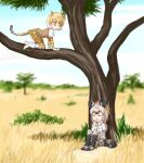 =_= animal_ears animal_print bangs black_hair blonde_hair blurry blurry_background bodystocking boots bow bowtie breast_pocket cat_girl closed_eyes commentary_request day elbow_gloves extra_ears eyebrows_visible_through_hair gloves grass grey_hair hyena_ears hyena_girl hyena_tail in_tree kemono_friends leopard_(kemono_friends) leopard_ears leopard_girl leopard_print leopard_tail long_hair long_sleeves looking_at_another medium_hair multicolored_hair on_ground open_mouth outdoors pleated_skirt pocket print_gloves print_legwear print_skirt savannah shirt shoes short_over_long_sleeves short_sleeves shun05q sidelocks skirt smile spotted_hyena_(kemono_friends) sweater_vest tail thigh-highs tree white_hair yellow_eyes |d