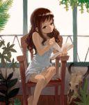 book chair plant plants reading shirane_taito sitting skull window