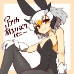1girl 370ml alternate_costume animal_ears bangs beige_border black_legwear black_leotard border breasts brown_eyes character_name closed_mouth commentary fake_animal_ears gloves grey_hair hand_on_own_knee head_wings kemono_friends knee_up leaning_back leotard looking_at_viewer multicolored_hair northern_white-faced_owl_(kemono_friends) orange_hair pantyhose playboy_bunny rabbit_ears short_hair sitting small_breasts smile solo strapless strapless_leotard translated white_background white_gloves white_hair
