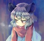 1girl animal_ears bangs blue_capelet breath capelet commentary_request grey_hair mouse_ears mouse_girl nazrin red_scarf scarf short_hair sideways_glance solo tomobe_kinuko touhou upper_body