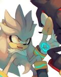 commentary english_commentary eye_contact frown highres looking_at_another no_humans salanchu serious shadow_the_hedgehog silver_the_hedgehog simple_background smile sonic_the_hedgehog violet_eyes white_background yellow_eyes