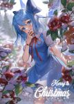 1girl absurdres arm_behind_back arm_up artist_name blue_dress blue_eyes blue_hair blurry blurry_background breasts cirno commentary cowboy_shot day dress english_text flower hair_between_eyes hair_ribbon highres holding holding_flower leaf leaning_to_the_side light_blush looking_at_viewer merry_christmas milcona open_mouth outdoors overcast petticoat pinafore_dress puffy_short_sleeves puffy_sleeves red_flower red_neckwear red_ribbon ribbon shirt short_hair short_sleeves small_breasts snow snowing solo standing touhou tree tree_branch upper_teeth white_shirt wings wristband