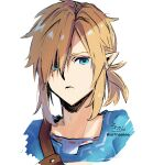 1boy bangs blonde_hair blue_eyes closed_mouth cropped_torso eyebrows_behind_hair hair_over_one_eye highres link looking_at_viewer male_focus pointy_ears signature simple_background sofra solo the_legend_of_zelda tunic twitter_username upper_body white_background