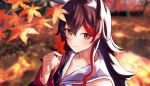 1girl absurdres animal_ear_fluff animal_ears autumn_leaves black_hair blurry blurry_background blush closed_mouth collarbone commentary day eyebrows_visible_through_hair hair_between_eyes highres holding holding_leaf hololive leaf long_hair looking_at_viewer maple_leaf multicolored_hair mushrooming_man ookami_mio orange_eyes outdoors portrait redhead sailor_collar smile solo streaked_hair two-tone_hair virtual_youtuber wolf_ears