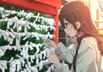 1girl black_shirt blurry blurry_background blush brown_hair building bush highres holding holding_paper jacket kei_(0497) long_hair long_sleeves new_year orange_eyes original paper parted_lips plant shirt shrine solo standing white_jacket