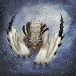 barioth blizzard folded_wings monster_hunter monster_hunter_3 mythro snow tusks wings