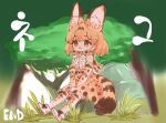 absurdres animal_ear_fluff animal_ears belt black_belt bow bowtie brown_eyes elbow_gloves gloves hair_behind_ear hands_together highres huge_filesize kemono_friends notora rock serval_(kemono_friends) serval_ears serval_print serval_tail shirt_tucked_in short_hair sitting tail thigh-highs tree