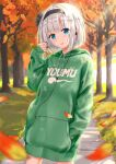 1girl autumn autumn_leaves blue_eyes bow_hairband casual character_name contemporary earphones earphones eyebrows_visible_through_hair grass green_hoodie hairband hand_in_pocket highres hood hoodie konpaku_youmu looking_at_viewer short_hair sidewalk solo tim86231 touhou tree white_hair