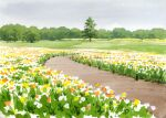 clouds cloudy_sky flower grass highres masuyamaosamu no_humans orange_flower original outdoors path scenery sky tree white_flower yellow_flower