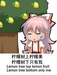 bow chibi chinese_commentary chinese_text closed_eyes collared_shirt commentary_request crying dress_shirt eyebrows_visible_through_hair food fruit fujiwara_no_mokou hair_bow hard_translated jokanhiyou lemon long_hair open_mouth pants partially_translated pink_hair puffy_short_sleeves puffy_sleeves red_pants shiny shiny_hair shirt short_sleeves sidelocks smile suspenders third-party_edit touhou translation_request tree white_bow white_shirt