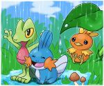 ^_^ animal_focus arms_up artist_name black_eyes blue_outline blue_sky border closed_eyes closed_mouth clouds colored_sclera commentary day full_body gen_3_pokemon grass green_outline happy leaf mudkip mushroom no_humans open_mouth orange_outline outdoors outline outstretched_arms pokemon pokemon_(creature) puddle rain rorosuke sitting sky smile standing torchic treecko twitter_username violet_eyes water_drop white_border yellow_sclera