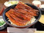 blurry blurry_background bowl chopsticks cucumber cucumber_slice cup eel fish food food_focus grilled_eel highres igaiga_(igarashijunji) no_humans original realistic rice still_life unajuu_(food) vegetable
