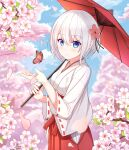 1girl bangs blue_eyes blurry blurry_background blush breasts bug butterfly cherry_blossoms chihaya_(clothing) clouds cloudy_sky day eyebrows_visible_through_hair falling_petals flower hair_between_eyes hair_flower hair_ornament hakama insect japanese_clothes long_sleeves looking_at_viewer miko original parasol petals red_hakama short_hair sidelocks sky smile solo spring_(season) tsukiko_neko umbrella white_hair wide_sleeves