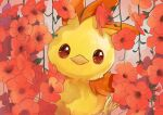 alternate_color brown_eyes closed_mouth commentary_request flower gen_3_pokemon goma_(nabepa_nabepa) highres looking_at_viewer no_humans plant pokemon pokemon_(creature) shiny_pokemon starter_pokemon torchic vines yellow_fur