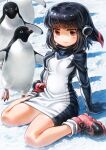 1girl adelie_penguin adelie_penguin_(kemono_friends) bird black_hair black_sweater blush boots commentary_request dress eyebrows_visible_through_hair headphones highres kemono_friends lain long_sleeves penguin pink_footwear red_eyes redhead short_hair sitting snow socks solo sweater sweater_dress turtleneck turtleneck_sweater wariza white_legwear white_sweater