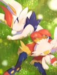 blush cinderace closed_eyes closed_mouth from_above gen_8_pokemon grass highres lying nullma on_side paws pokemon pokemon_(creature) scorbunny sleeping starter_pokemon toes