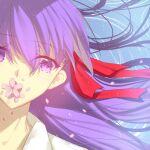 eyebrows_visible_through_hair fate/stay_night fate_(series) flower_on_mouth hair_ribbon heaven's_feel matou_sakura purple_hair ribbon type-moon ufotable violet_eyes zizou_xingzao